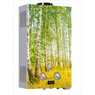 Газовый водонагреватель Vektor Lux Eco JSD20-2